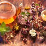 tıbbi bitkiler, tıbbi bitkilerin etkleşimi, tıbbi bitkilerin kullanım şekli