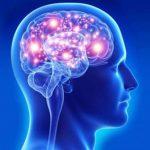 beyin hastalıkları, sinir hastalıkları, sinir hastalıkları nelerdir