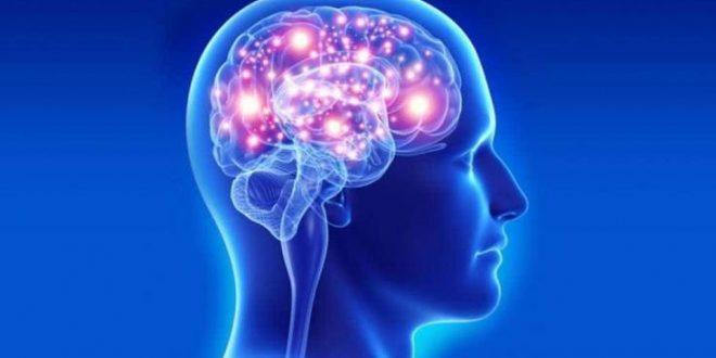 Beyin ve Sinir Hastalıklarına Dair Bilinmesi Gerekenler